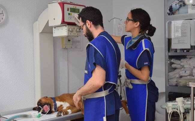 Clínica Albacora Radiografía
